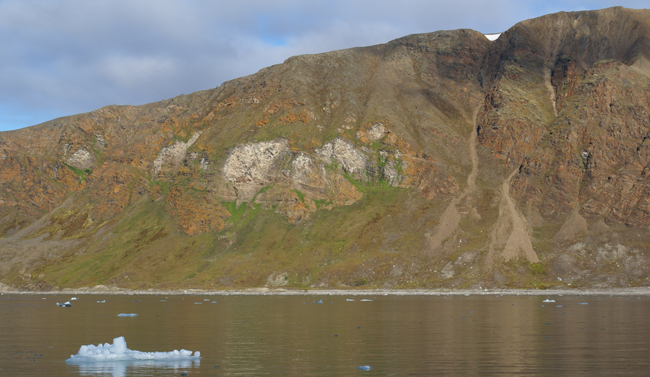 14th July Glacier birdcliffs. As with the Grumont cliffs the evidence of nutrientes from the birdcliffs is clear.