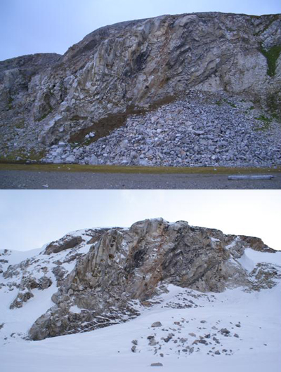 The kitiwake cliffs in summer and winter.  The larvae are to be found in the layer of dead moss a thrid of the way up the cliffs.
